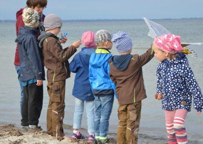 Ostsee macht Wind für Drachen